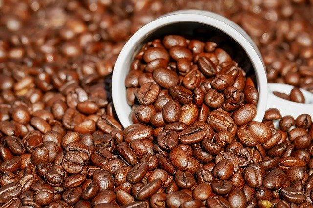 cup sitting in pile of coffee beans