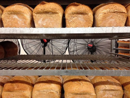 loaves of bread cooling on racks