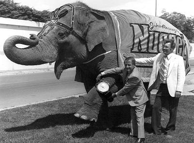 historic photo of elephant bertha and john ascuaga