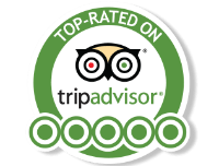 Great Reviews on TripAdvisor