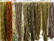 Nevada Museum of Art, Artist Sarah Lillegard on Natural Dyes and Craft Culture