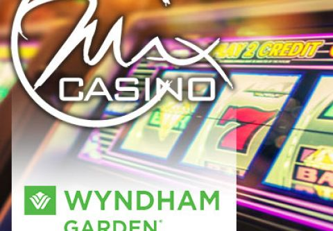 Max Casino, Play, Stay, and Feed Your Inner Bear
