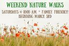 Wilbur D. May Museum, Weekend Nature Walk